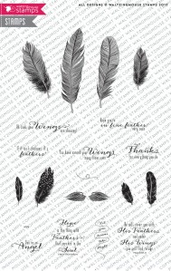 Fine-feathers-STORE_1024x1024